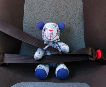 bear seatbelt